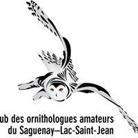 Club des ornithologues amateurs du Saguenay-Lac-Saint-Jean