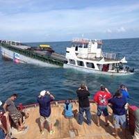 Saltwater-fisheries Enhancement Association - SEA