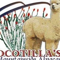 Ocotilla's Mountainside Alpacas