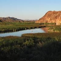Support Picacho State Recreation Area