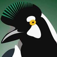 Reserva Chara Pinta - Tufted Jay Preserve