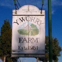 Y Worry Farm, Pumpkin Patch & Christmas Tree Shoppe