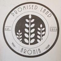 Promised Land Aronia