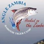 Angle Zambia
