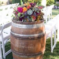 Grapevine Party Rentals
