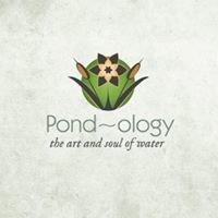 Pondology
