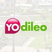Yodileo
