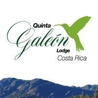 Quinta Galeon Lodge - Hummingbirds / Birding / Costa Rica
