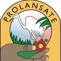 Fundación PROLANSATE