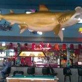 Sharkies on the Beach Bar and Grill
