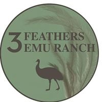 3 Feathers Emu Ranch and Farm
