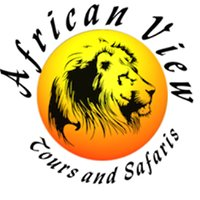 African View Tours and Safaris