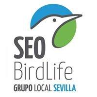 SEO-Sevilla