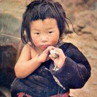 Yeshe Norbu Appello per il Tibet onlus