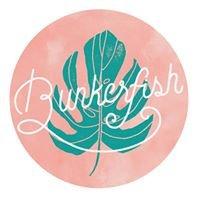 Bunkerfish Design