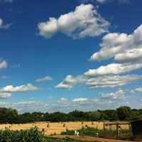 Brewer's Hideaway Farm