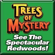 Trees of Mystery