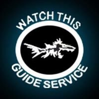 Watch This Guide Service