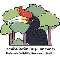 สถานีวิจัยสัตว์ป่าป่าพรุ ป่าฮาลา-บาลา • Hala Bala Wildlife Research Station