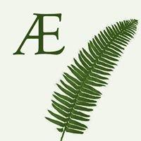 Applied Ecology LLC