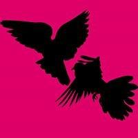 Coalition to Abolish Spring Hunting