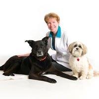 Petmobile Vet Clinic Inc.