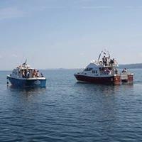 Stardust Boat Trips Isle Of Skye