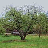 Applegard Farm