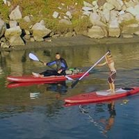 UTD Paddle Dive