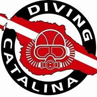 Diving Catalina