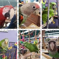 Varietees Bird Store