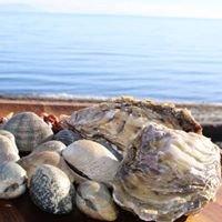 Salish Sea Foods