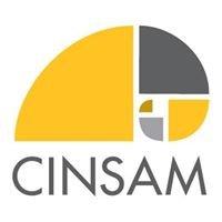 NKU Center for Integrative Natural Science and Mathematics - CINSAM