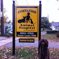 Companion Animal Hospital - Karen Lazas DVM