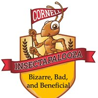 Insectapalooza Cornell