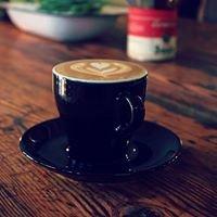 Tulip Coffee Roasting