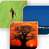ETC-Africa