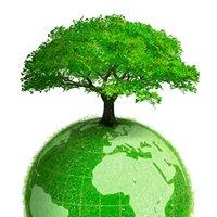 Department of Environmental Science IIUI