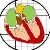 Butcher Lab (Cardiovascular Developmental Bioengineering Laboratory)