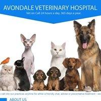 Avondale Veterinary Hospital - XLVets Ireland Member