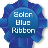 Solon Blue Ribbon Adapted Recreation Program
