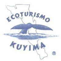 Kuyima Tours