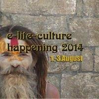 E-lite-culture Festival