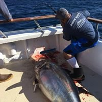 PACIFIC DAWN SPORTFISHING