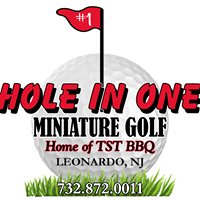 Hole In One Miniature Golf