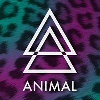 ANIMAL - RVA