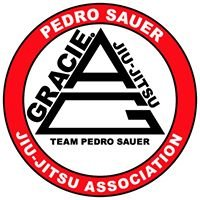 Pedro Sauer Academy: One Spirit Martial Arts