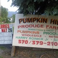 Pumpkin Hill Produce farms