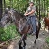 Tidewater Horse Trail