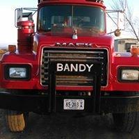 Bandy Joe & Son